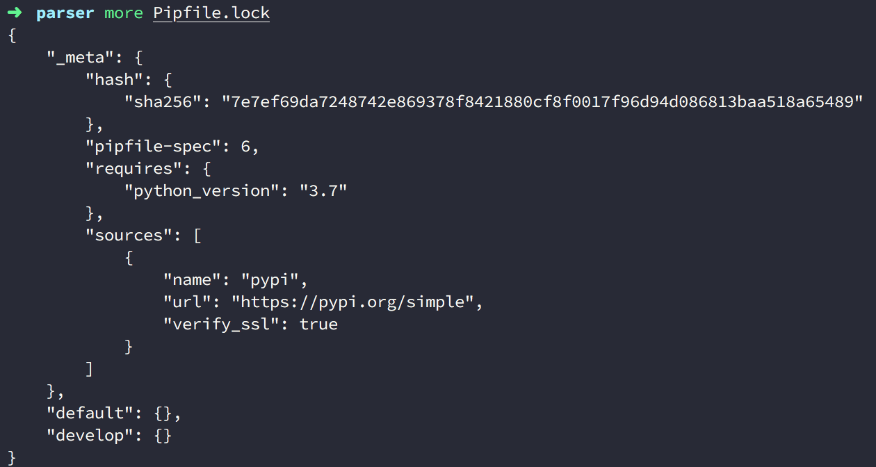 4-pipenv-create-pipfile-lock